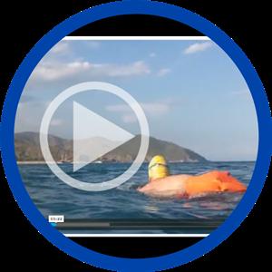 mediterra camp videos